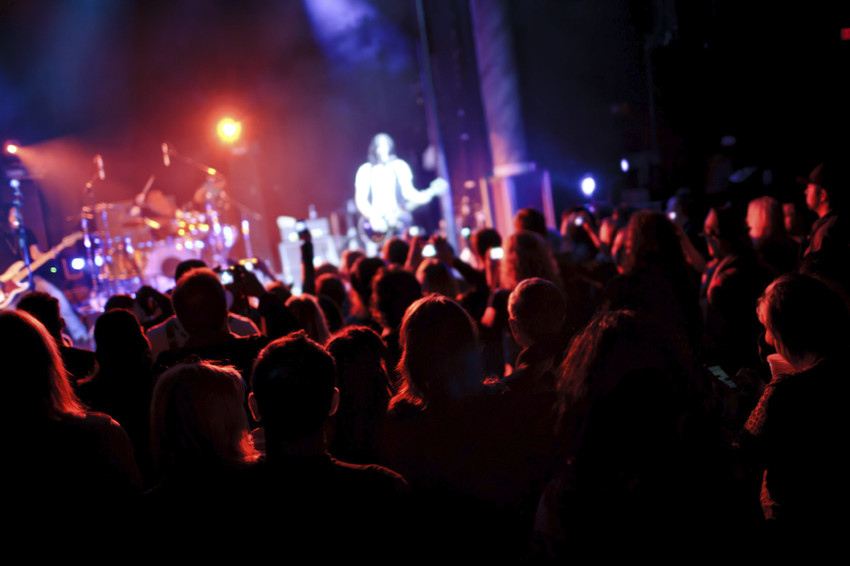 crowds of people at a live concert