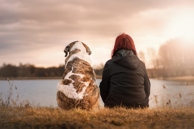 a woman and her dog sitting by a lake watching the sunset.