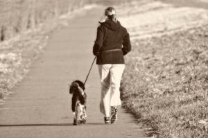 a woman and her dog walking down a trail.